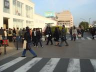 Photo_251